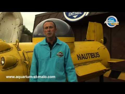 Directeur du Grand Aquarium de Saint-Malo - France